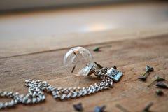 Smyckenwhitmaskrosen kärnar ur i exponeringsglaset Arkivbild