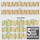 5 smyczkowego basu podstawowa ważna skala dla basowego gracza te Obraz Stock