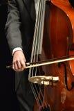 Smyczkowy instrument Zdjęcie Stock
