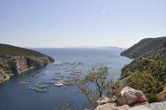 Snäckskal brukar för att odla i det Aegean havet i Grekland arkivfoto