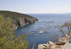 Snäckskal brukar för att odla i det Aegean havet i Grekland royaltyfria foton