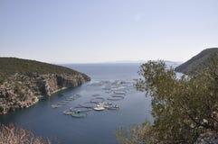 Snäckskal brukar för att odla i det Aegean havet i Grekland royaltyfria bilder