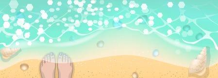 Snäckskal för våg för sommartid royaltyfri illustrationer