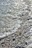 Snäckskal och hav på en Florida strand Arkivbilder