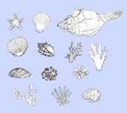 Snäckskal och koraller in för hand ställde utdragna på blå bakgrund stock illustrationer