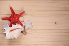 Snäckskal och sjöstjärna på en träbakgrund Arkivbilder