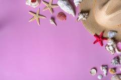 Snäckskal på pastellfärgad violett bakgrund med sugrörhatten - bakgrund för sommarferie Panton färg av 2018 år arkivfoton