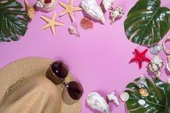 Snäckskal på pastellfärgad violett bakgrund med sugrörhatten - bakgrund för sommarferie Panton färg av 2018 år royaltyfria foton