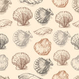 Snäckskal räcker utdragen etsning för vektordiagrammet skissar, den sömlösa modellen, den undervattens- konstnärliga marin- prydn royaltyfri illustrationer