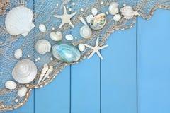 Snäckskalcollage Royaltyfria Bilder