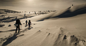 Snööken Arkivbild
