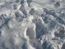Snö Royaltyfri Bild