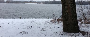 Snö eijsderbeemden Fotografering för Bildbyråer