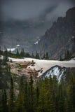 Snö för smältningsglaciär nära sjön Isabelle Vertical Composition Royaltyfri Bild