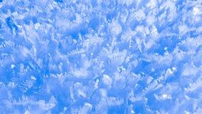 Snö flagar i iskristaller Fotografering för Bildbyråer