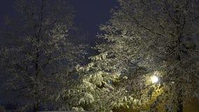 Snö fortsätter för att falla på för en tid sedan plogade parkeringsplatser under häftiga snöstormen som filt arkivfilmer