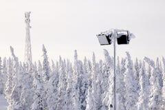 Snö-korkade träd för panorama- scenisk sikt, kullar Schweizisk Al för begrepp fotografering för bildbyråer