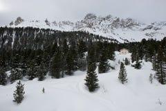 Snö når en höjdpunkt och fördunklar Fotografering för Bildbyråer