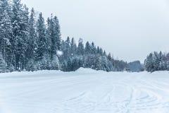Sn? och is av h?rliga Karelia royaltyfria foton