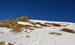 Snö och berget i vinter Arkivfoton