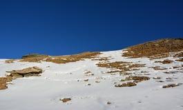 Snö och berget i vinter Royaltyfria Bilder