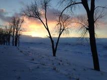 Snö- och isdyn på kust av Lake Erie på solnedgången, Presque ödelstatspark Arkivbild