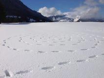 Snö och konst royaltyfri foto