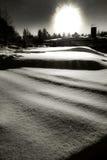 Snö och träd i vinterlandskap i arktisk cirkel Royaltyfria Bilder