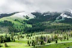 Snö på överkanten, gräs längst ner arkivfoto