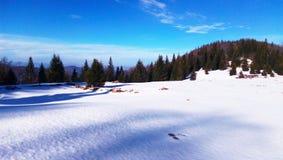 Snö på berget fotografering för bildbyråer