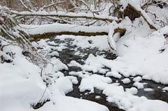 Snö på The Creek Royaltyfri Foto