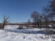 Snö på ett djupfryst damm täckas av blåa skuggor Arkivbilder
