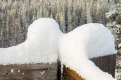 Snö på ett trästaket royaltyfria bilder