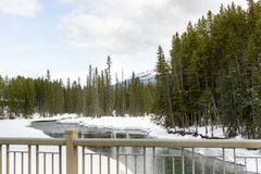 Snö på flodstrand royaltyfri bild
