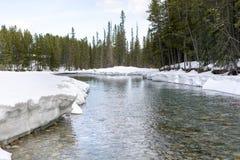 Snö på flodstrand royaltyfri fotografi