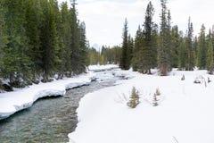 Snö på flodstrand arkivbilder