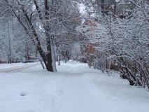 Snö på gatan Fotografering för Bildbyråer