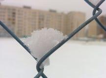 Snö på metallrastret royaltyfri foto