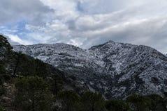Snö på Ronda Royaltyfria Bilder