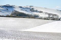 Snö på söder besegrar Royaltyfri Fotografi