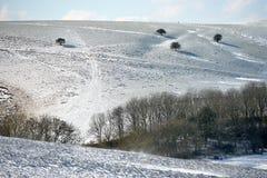 Snö på söder besegrar Arkivfoton