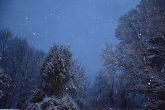 Snö på skymning Arkivfoto