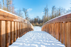 Snö på träbron i skogområde Fotografering för Bildbyråer