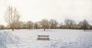 Snö parkerar Arkivfoton