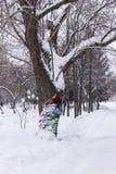 Snö parkerar Royaltyfri Foto