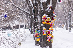 Snö parkerar Royaltyfria Bilder