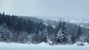 Snö som faller i skog