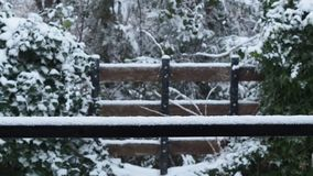 Snö som faller under snöstorm på trädgård lager videofilmer