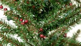 Snö som slappt faller på julträd lager videofilmer