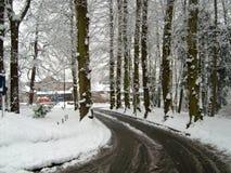 Snö täckt fodrad väg för vinter träd Arkivfoton